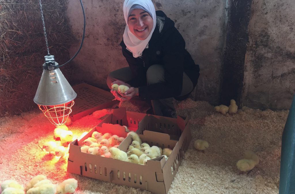 Nisreen shares her day as a volunteer at Farm2Fork